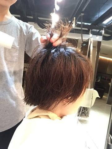 しまやまブログ_9546
