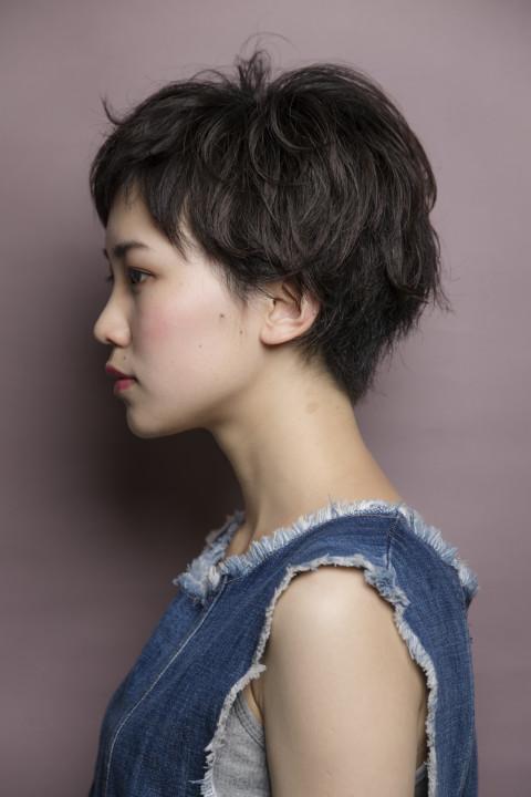 shorthair acqua kazuaki ito